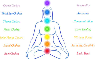 Thursday Night Virtual Yoga with Tami & Kelly – Our theme this week is PELVIC CHAKRA